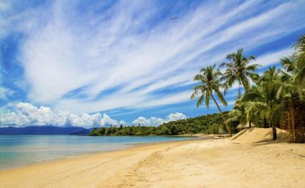 Andaman Tour - 8 Days